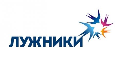 логотип спорткомплекса «лужники», 2014 год.