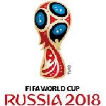 Символика ФИФА: ещё раз об использование