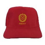 Бейсболки с логотипом от «Дельфин - море сувениров» для МВВКУ